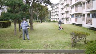 小金原団地 - 小金原団地の芝刈り
